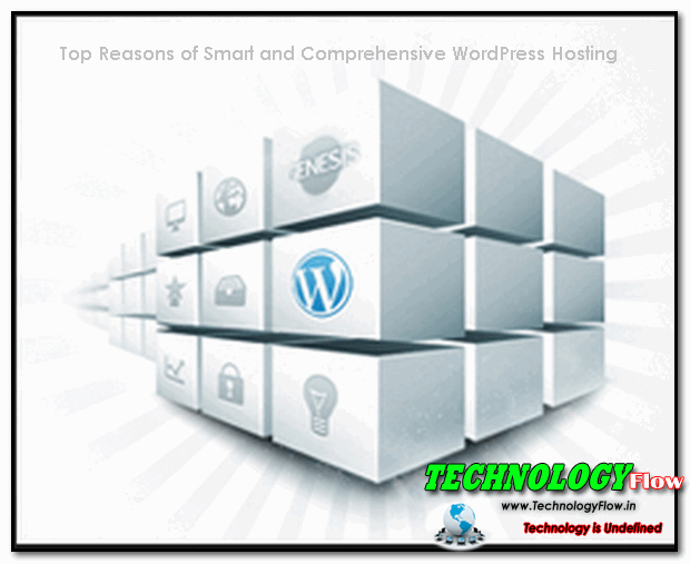 Top Reasons of Smart and Comprehensive WP Hosting