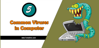 Common Viruses in Computer: You should know these in 2020