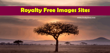 Best Royalty Free Image Websites To Make Your Blog Colourful