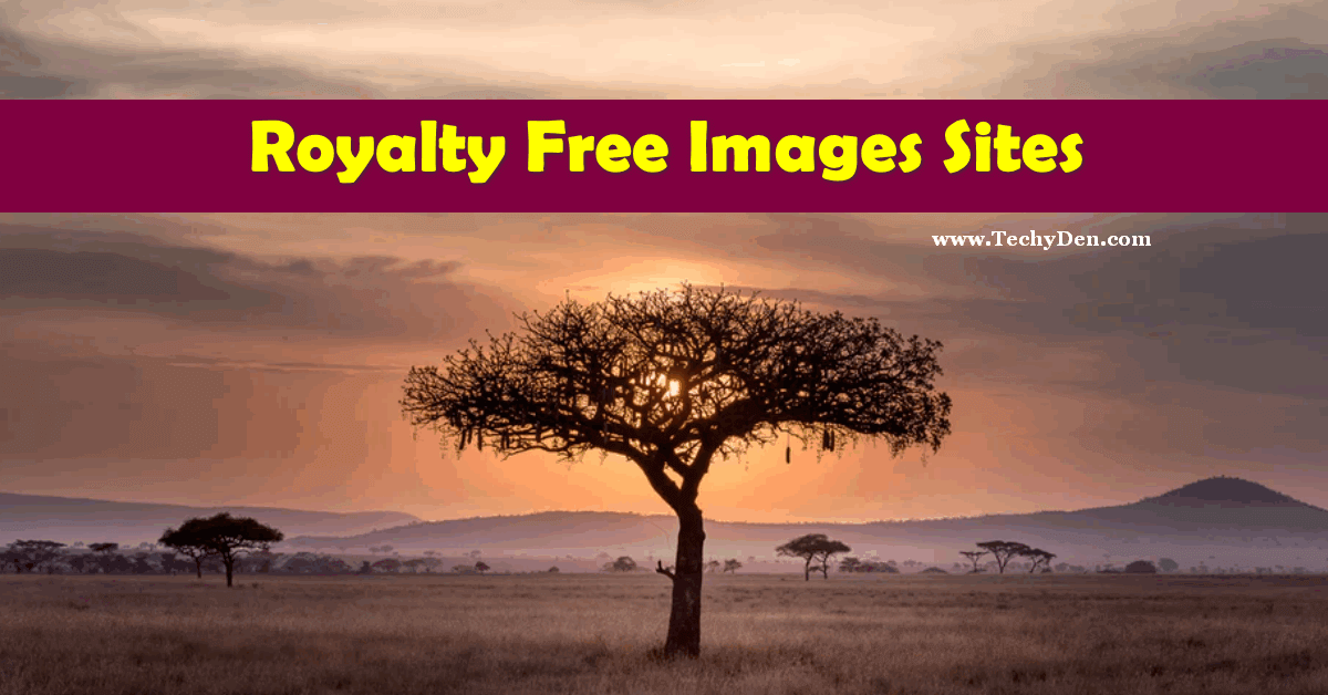 Best Royalty Free Image Websites To Make Your Blog Colourful 1